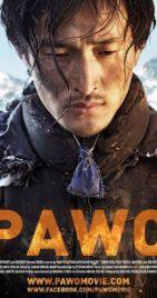 Whoop, whoop! Aktuell 9,1/10 auf IMDb für unseren Spielfilm Pawo !